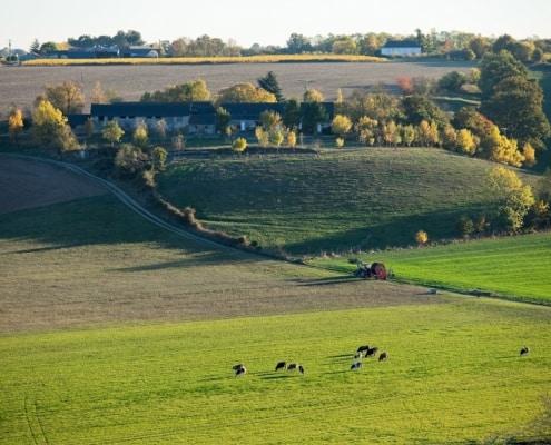 Blog – Agriculture